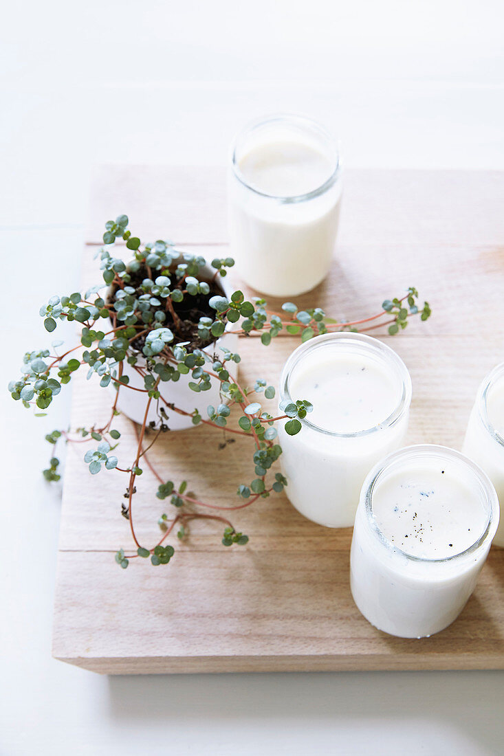 Sheep's yoghurt with vanilla