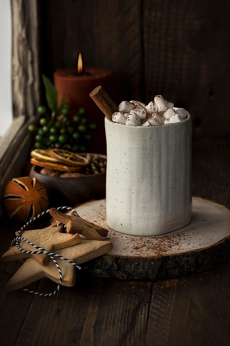 Cacao with marshmallow and cinnamon stick for Christmas
