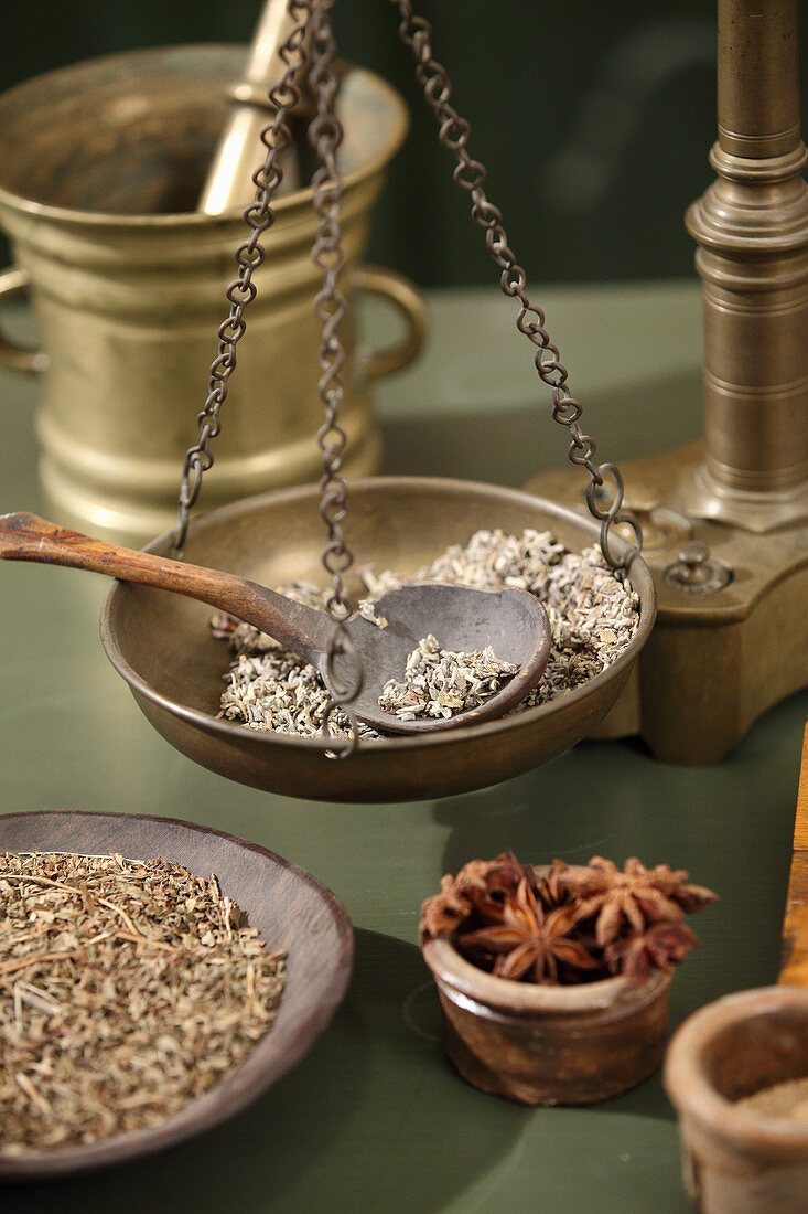 Weighing pan of an antique apothecary's scale with herbs