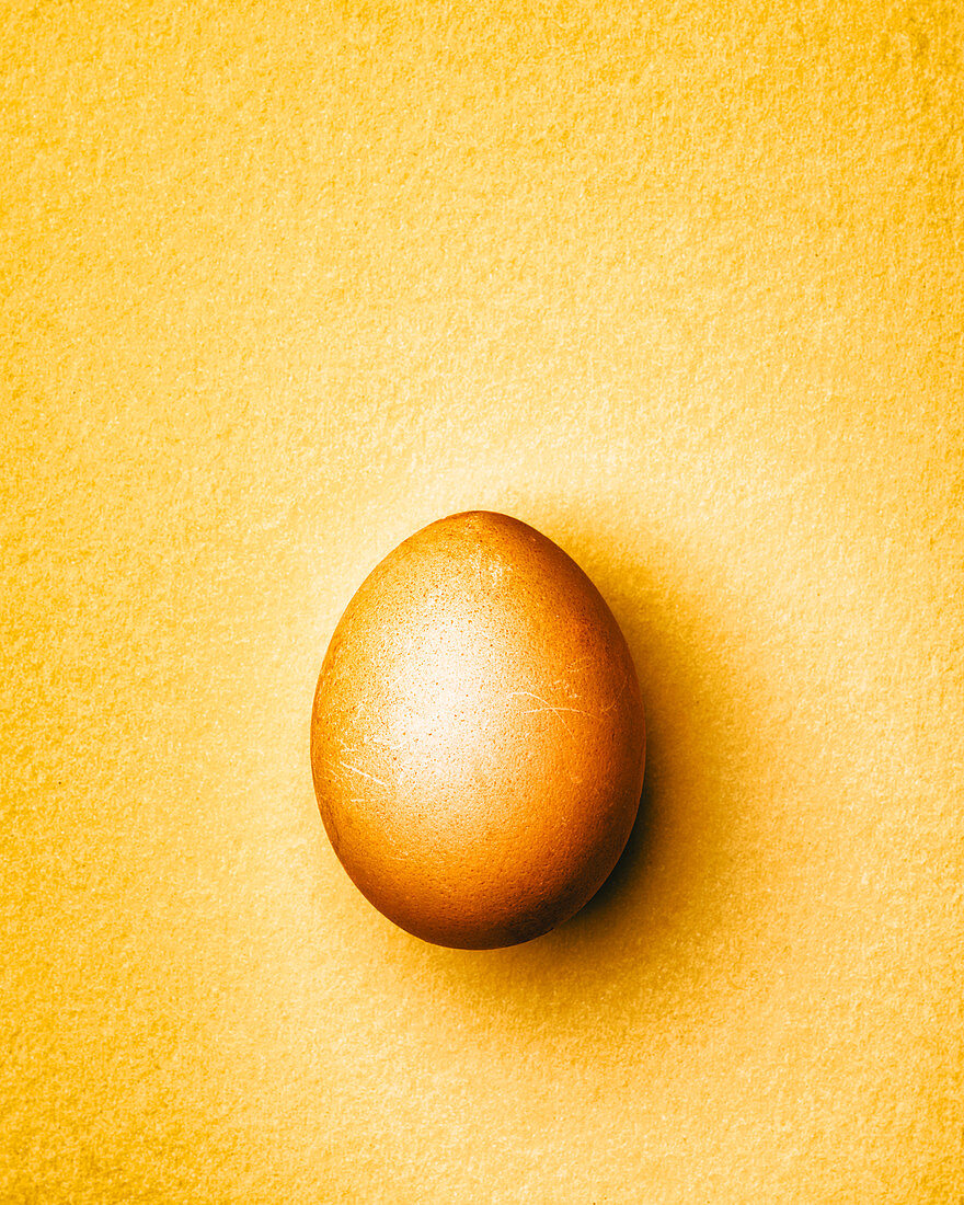 Brown chicken egg on a yellow background