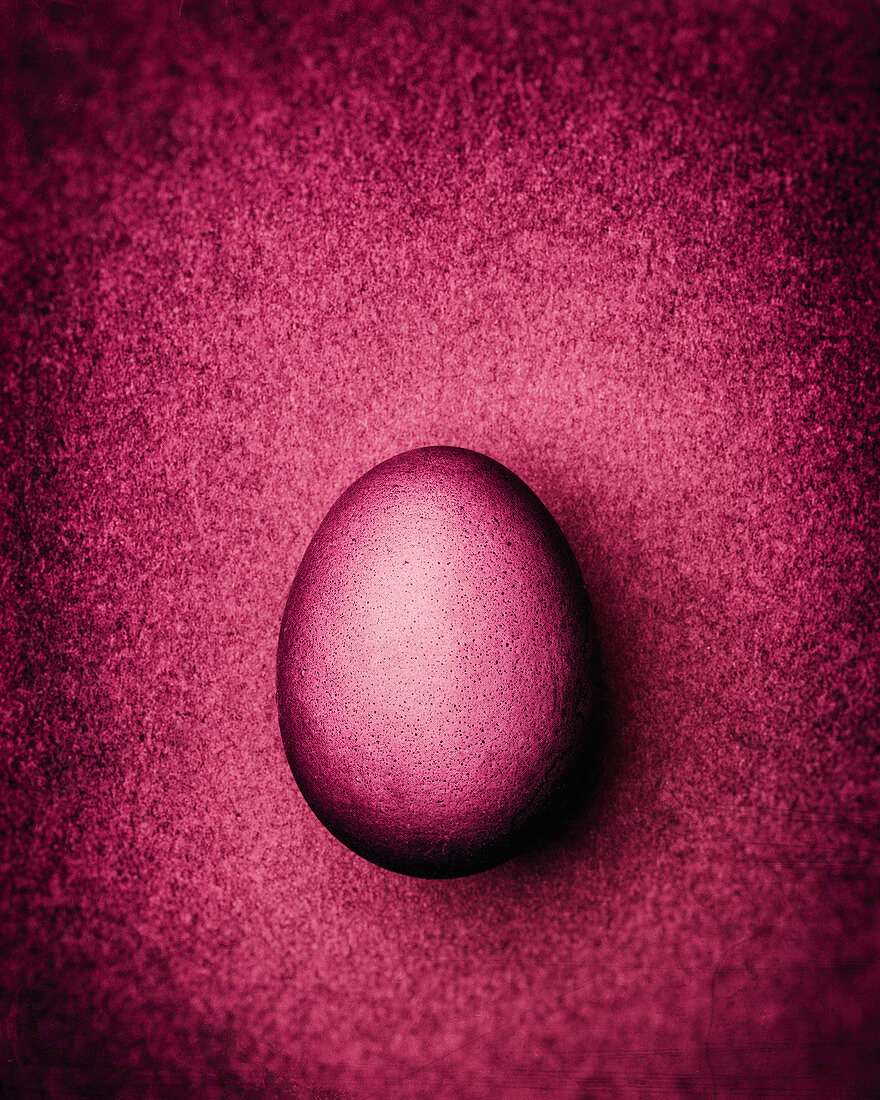 Wine-red Easter egg on a wine-red background