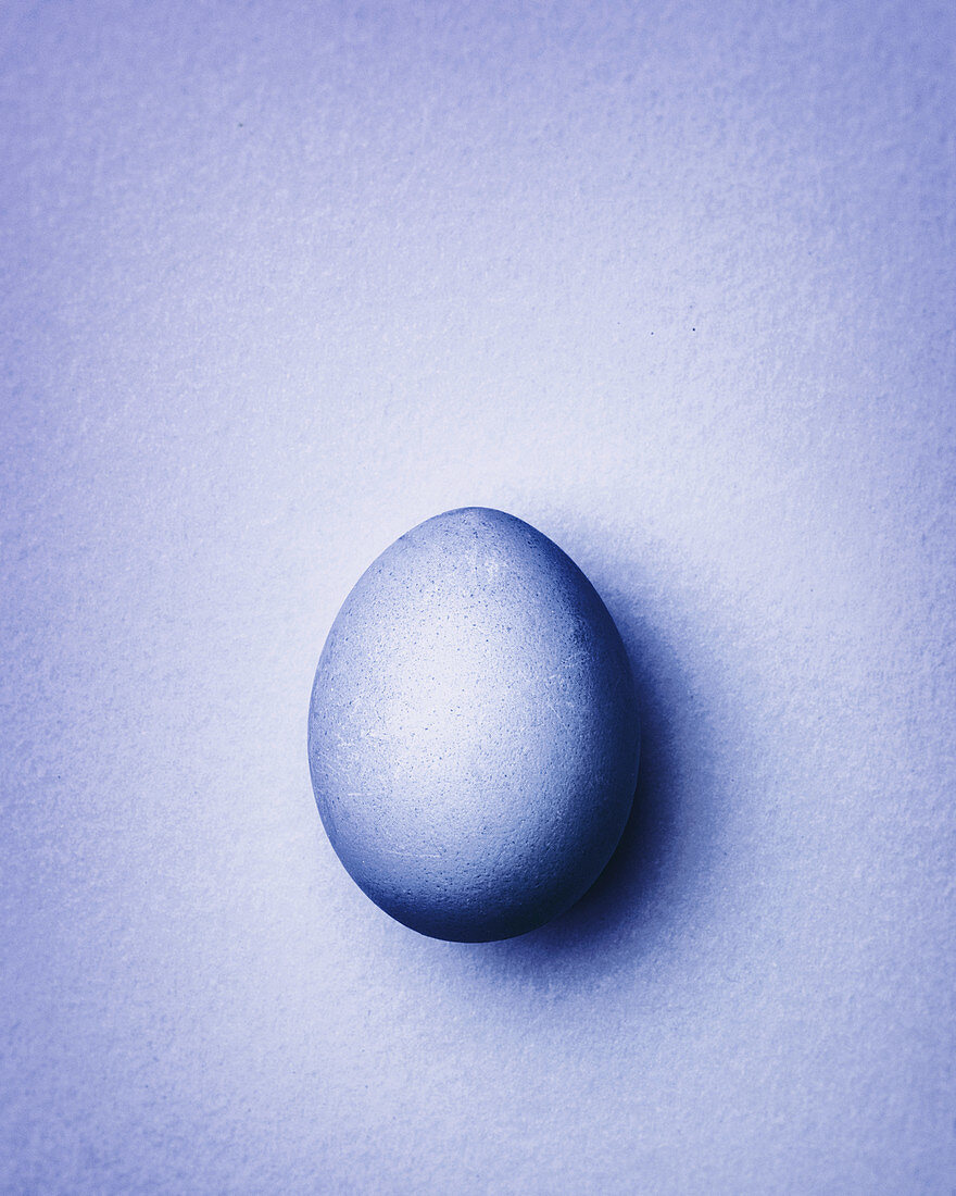 Purple Easter egg on a purple background