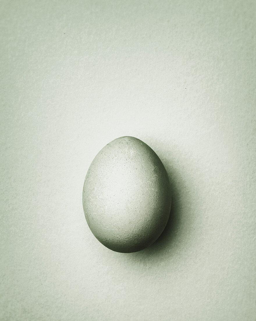 Light gray-green Easter egg on a gray-green background