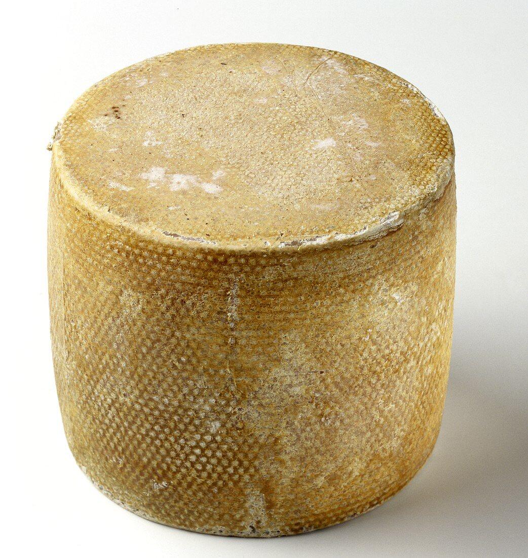 Tete de Moine: Swiss Hard Cheese