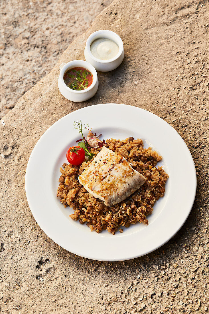 Fish steak with two sauces and majadara rice