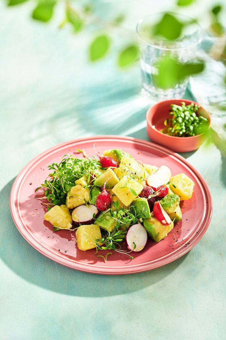 Potato salad with avocado, radishes and cress