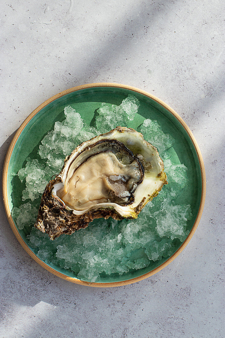 Fresh opened oyster on crushed ice