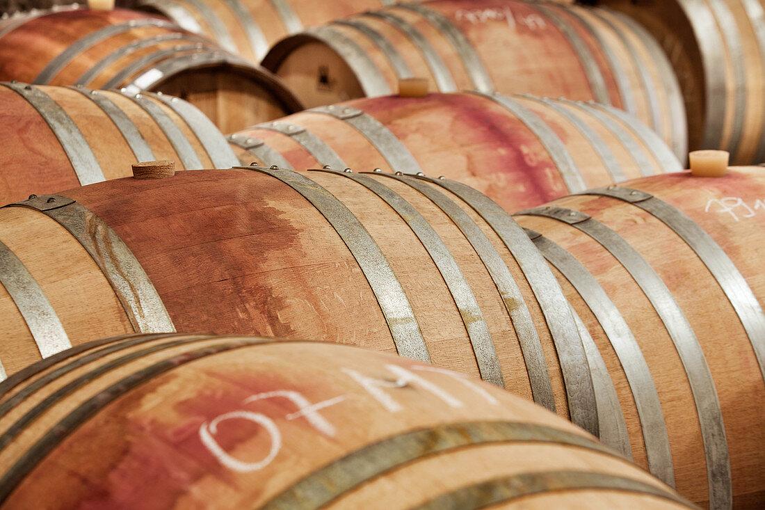 Barrique barrels, Martin Wassmer vineyard, Markgräflerland region, Baden, Germany