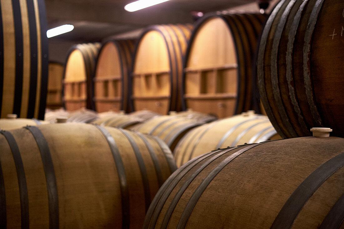 Wooden barrels, Chateau du Cedre, Cahors, France