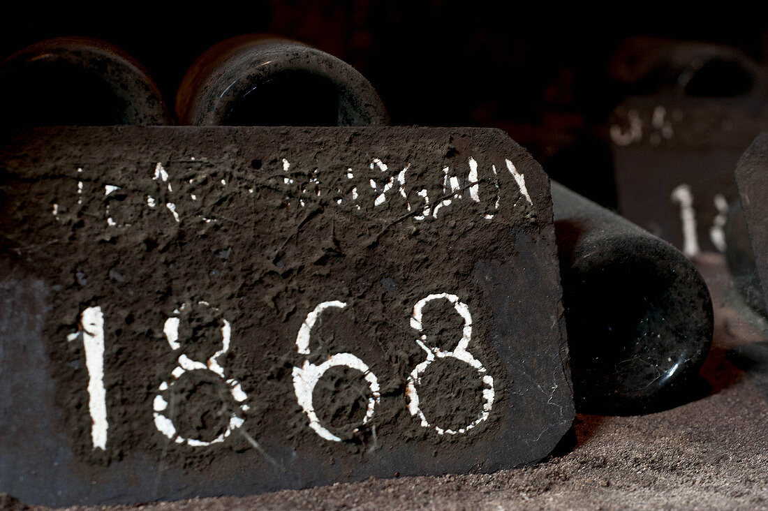 A mouldy slate, Chateau Margaux, Medoc, Bordeaux, France