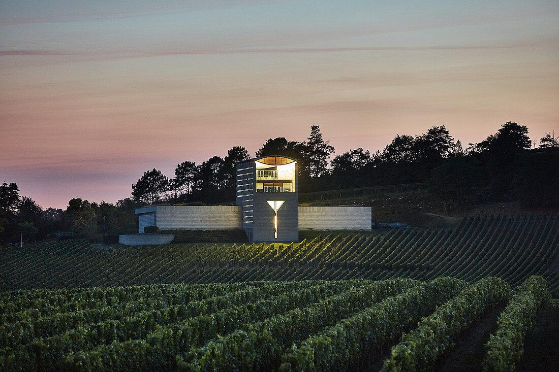 Vineyard landscape, Chateau Faugeres, Saint Emilion, Bordeaux, France