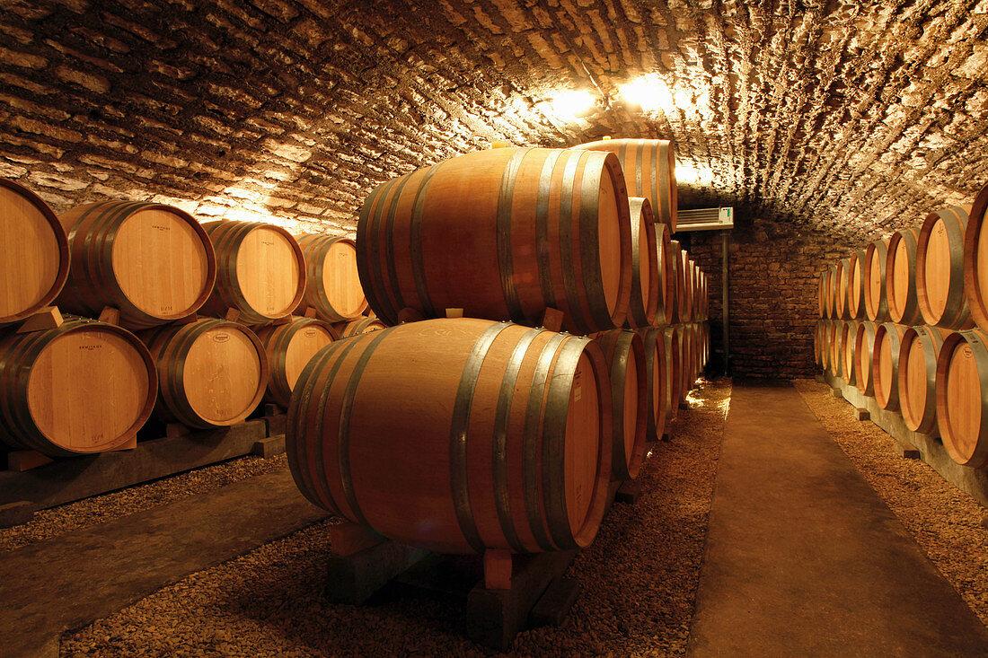 Barrique cellar, Domaine Jacques Prieur, Burgundy, France