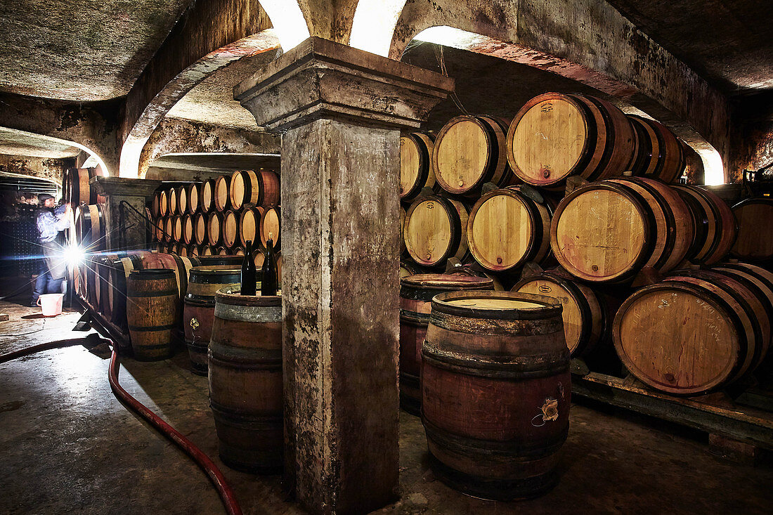 Barrique cellar, Jean-Louis Chave, Rhone, France