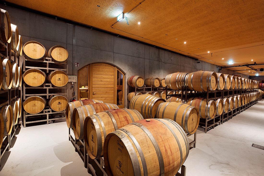 Barrique cellar, Martin Wassmer vineyard, Markgräflerland region, Baden, Germany