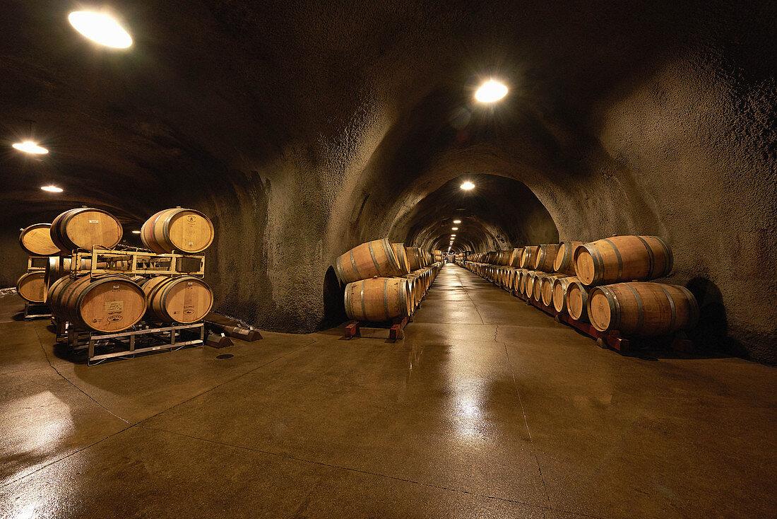 Barrel cellar, Inglenook Winery, Napa Valley, California, USA