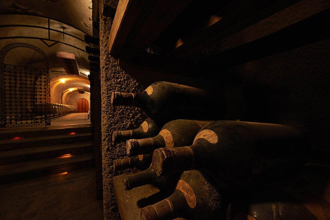 A bottle cellar, Newton Winery, Napa Valley, California, USA
