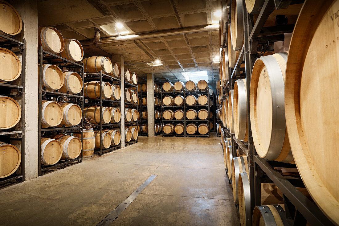 Barrique cellar, Binigrau vineyard, Majorca, Spain