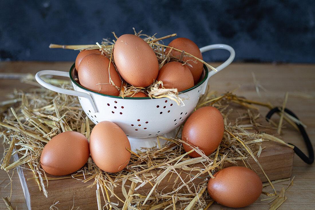 Brown chicken eggs in white colander on straw