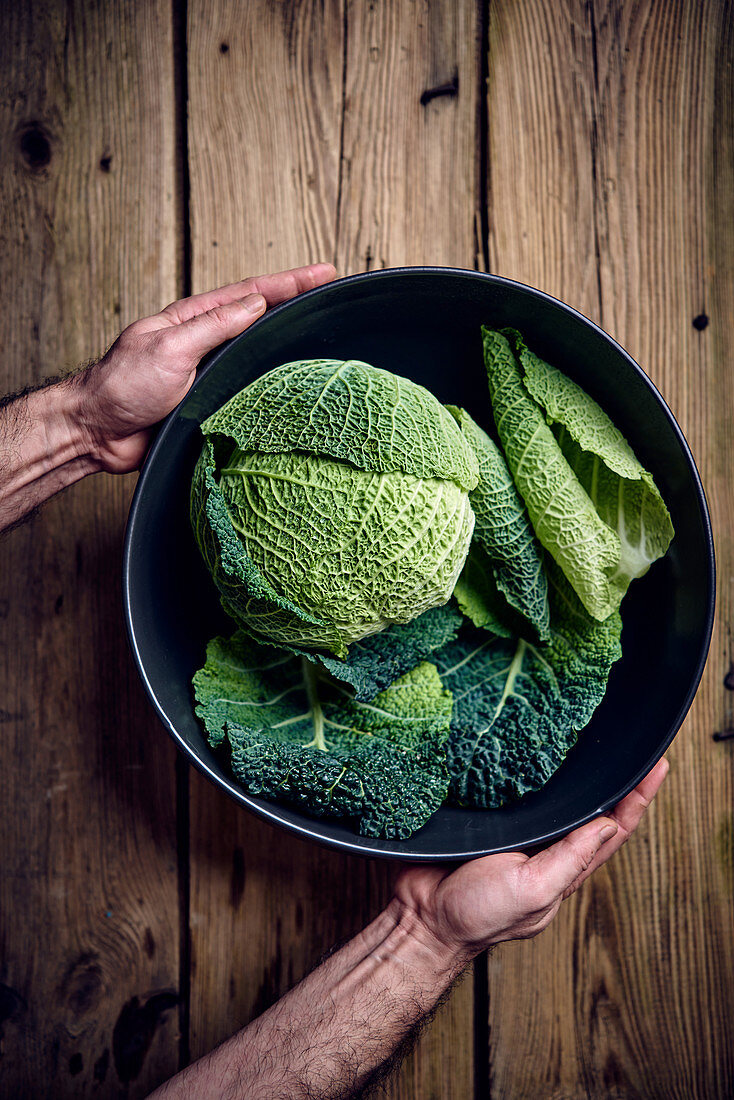 A fresh savoy cabbage in a bowl