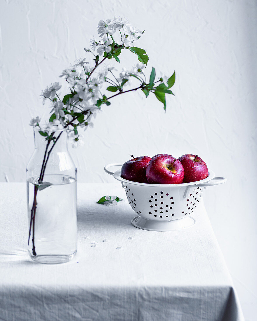 Red apples in a sieve on a table with apple blossom branches in a glass vase