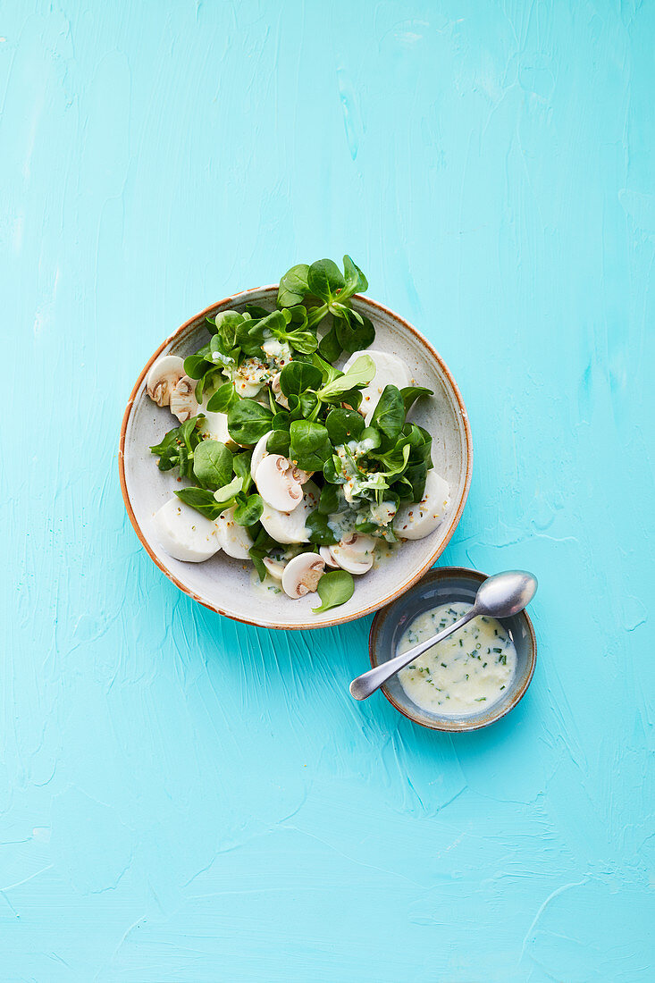 Lamb's lettuce with goat cheese and raw mushrooms