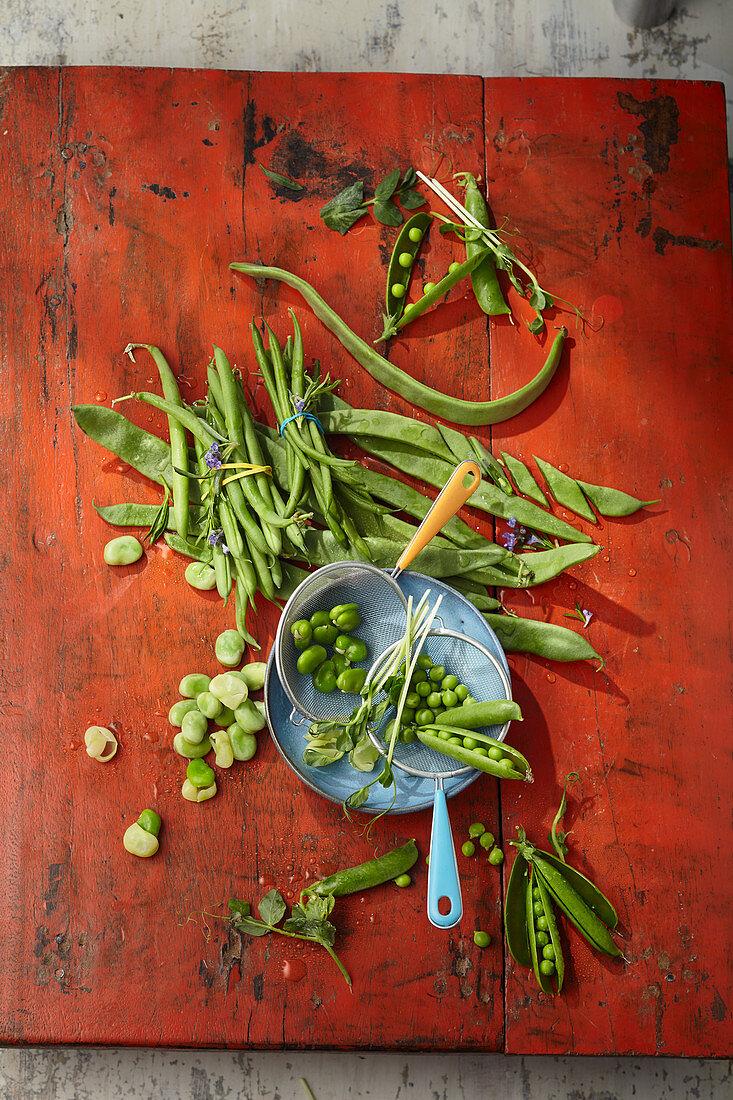 Verschiedene Bohnensorten und Erbsenschoten