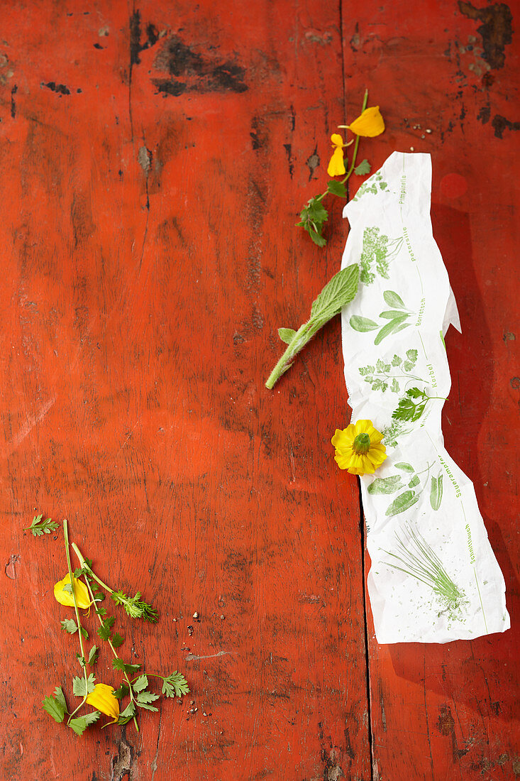 Edible flowers and herbs on a red-brown background