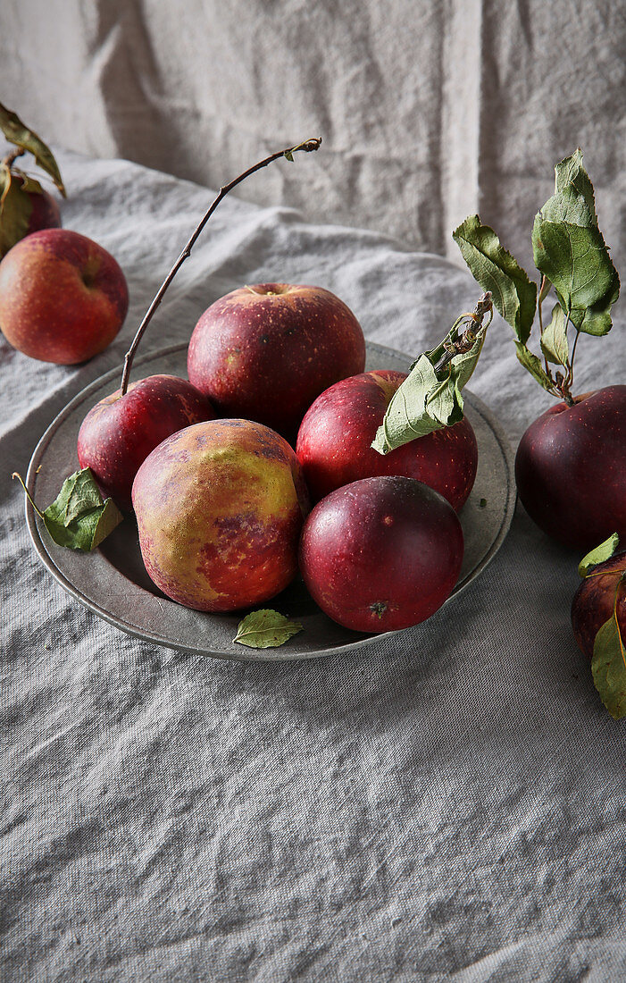 Apples in pewter dish