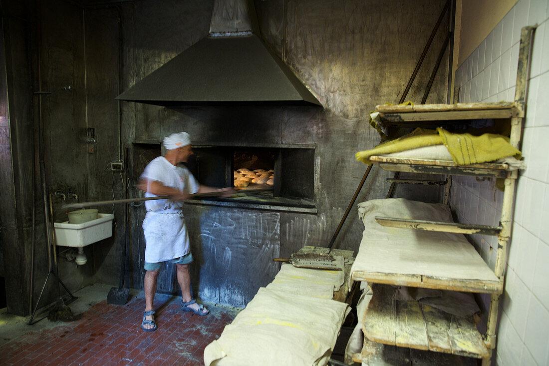 Baker in a bakery