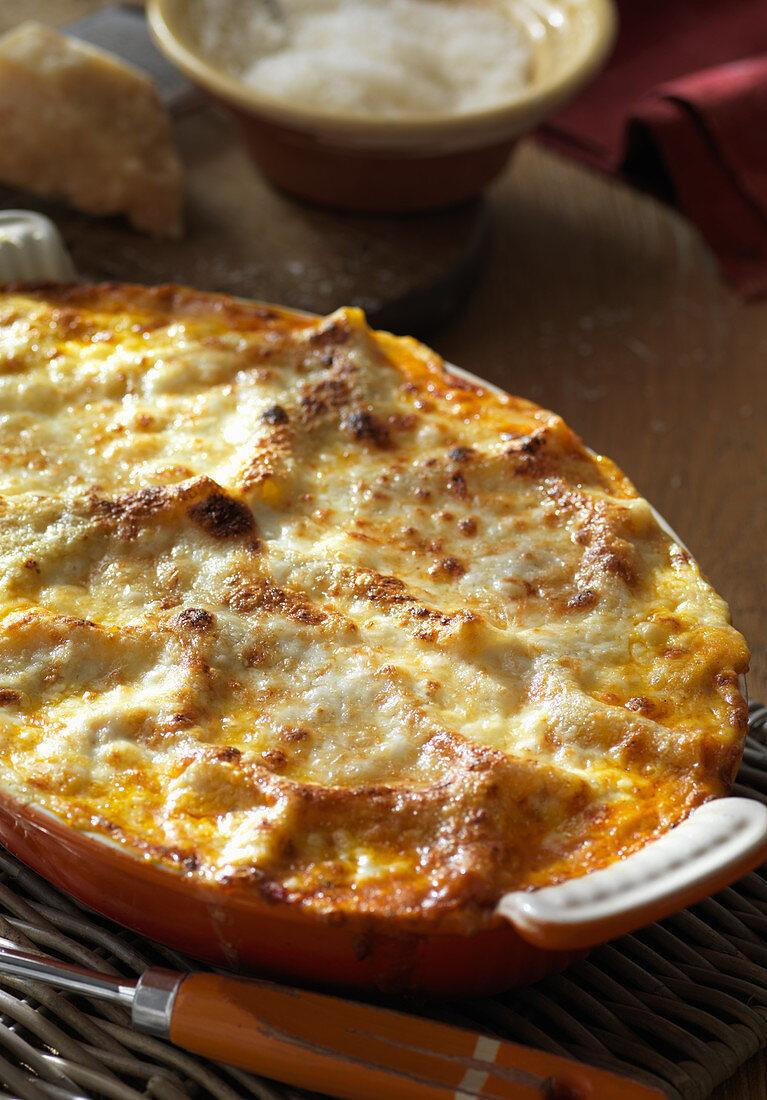 Golden lasagna