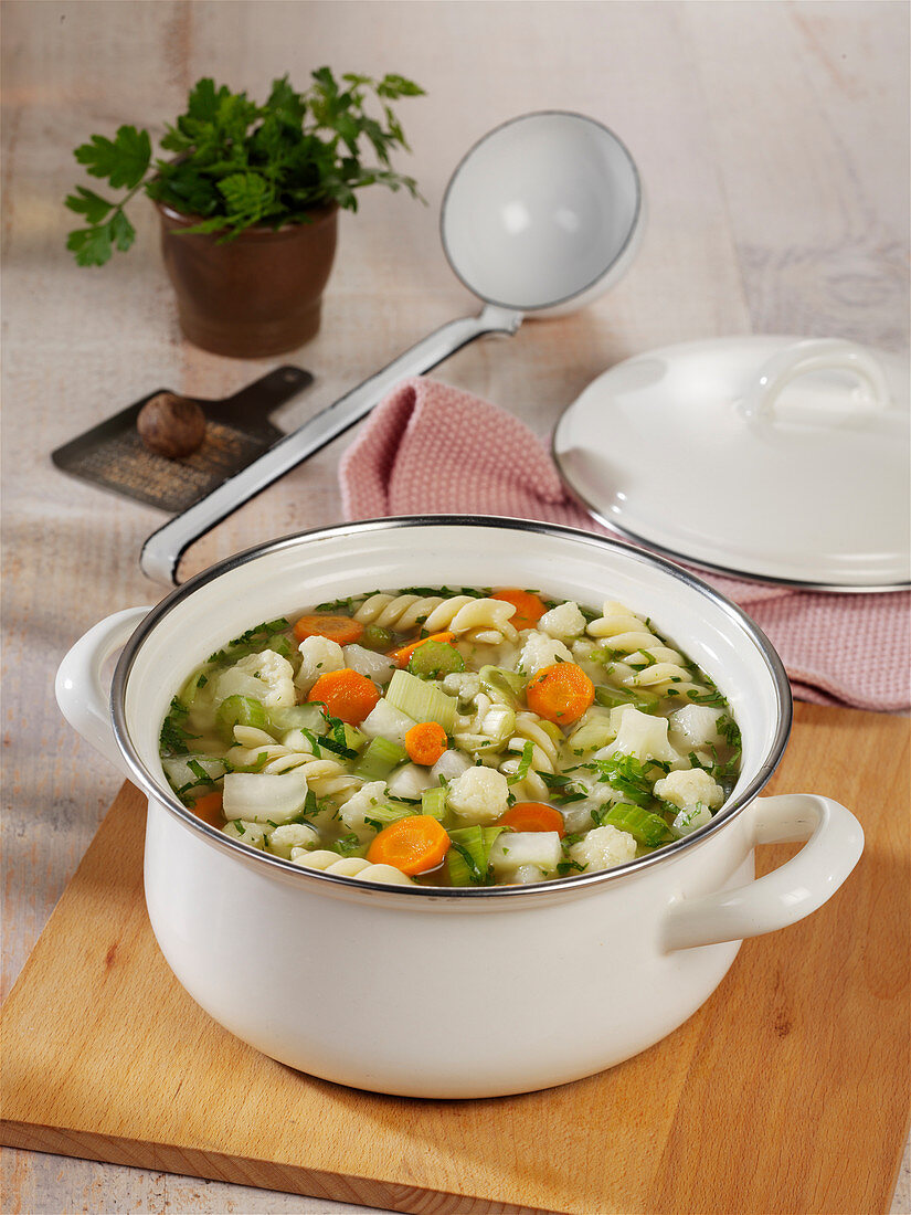Colorful vegetable stew with spirelli