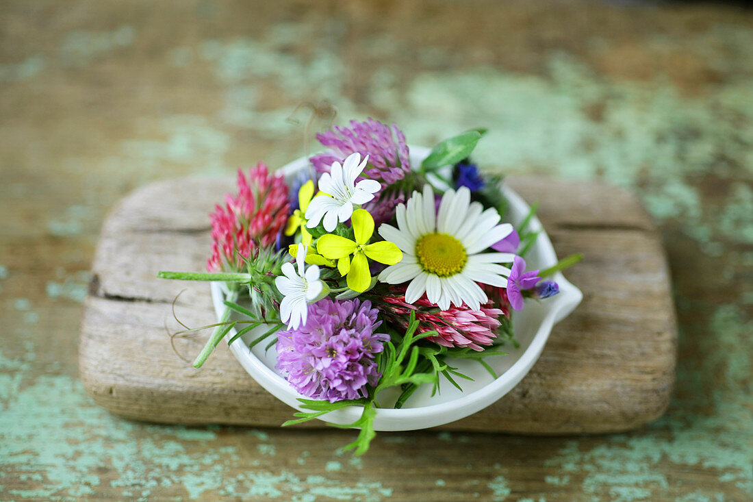 Early summer flowers: ox-eye daisy, clover, rapeseed and chickweed