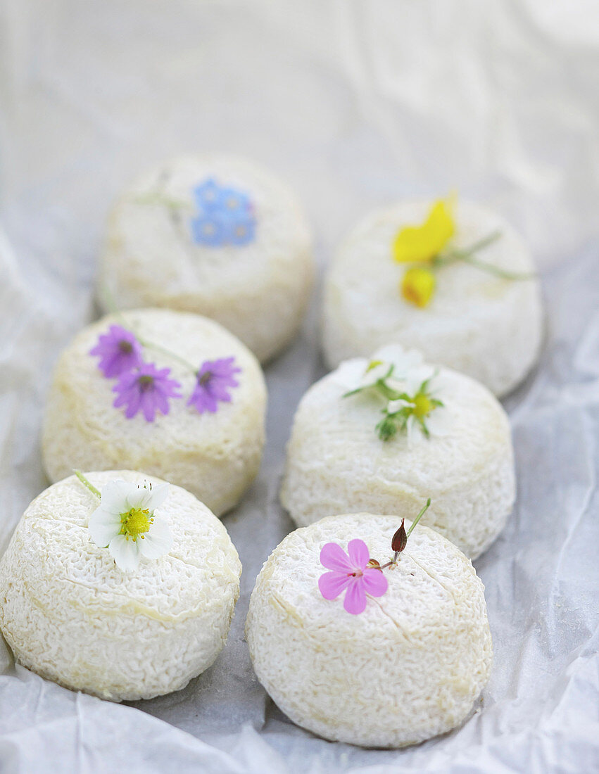 Sancerre cheese with wild flowers decoration on white paper