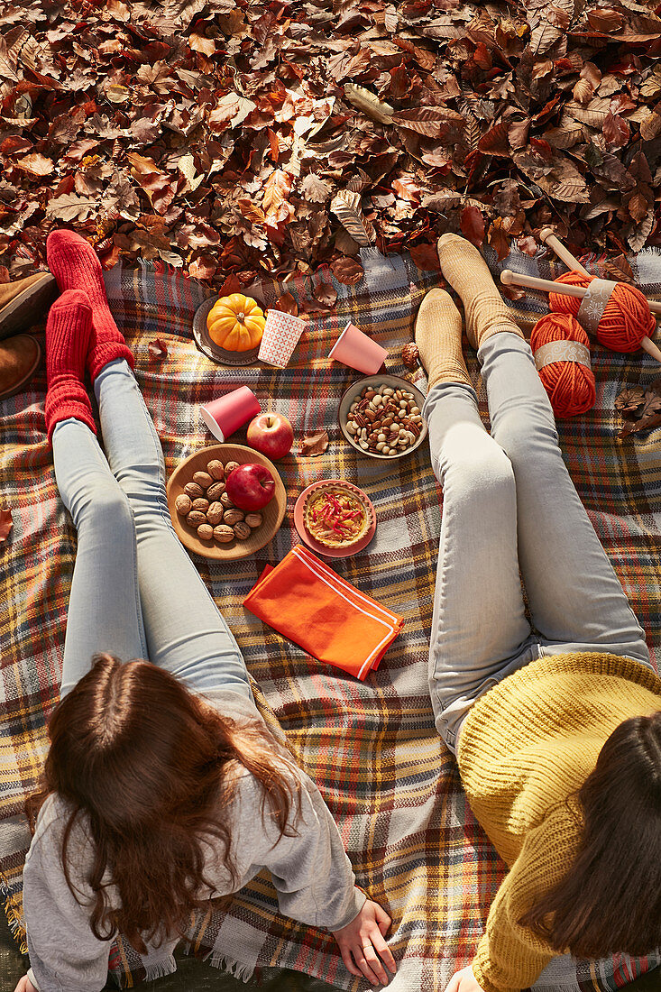 Two young girls in autumn colored decor picnic with apples various nuts pumpkins pie knitting