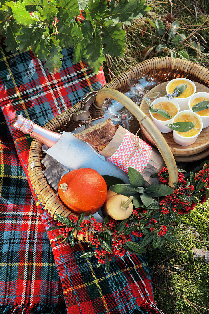 Picnic basket with champagne, pumpkin soup and bread