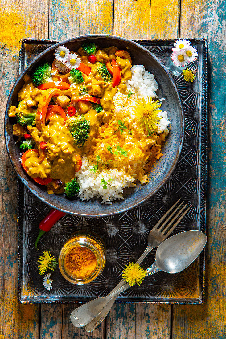 Indian vegetable curry with tofu and rice