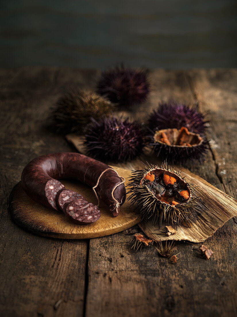 Still life with a sea urchin and black pudding