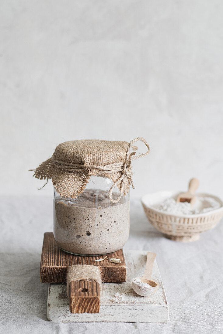 Sourdough starter for homemade bread