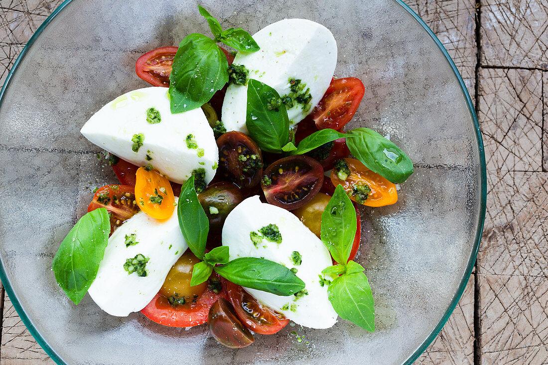 Tomato's variations with mozzarella