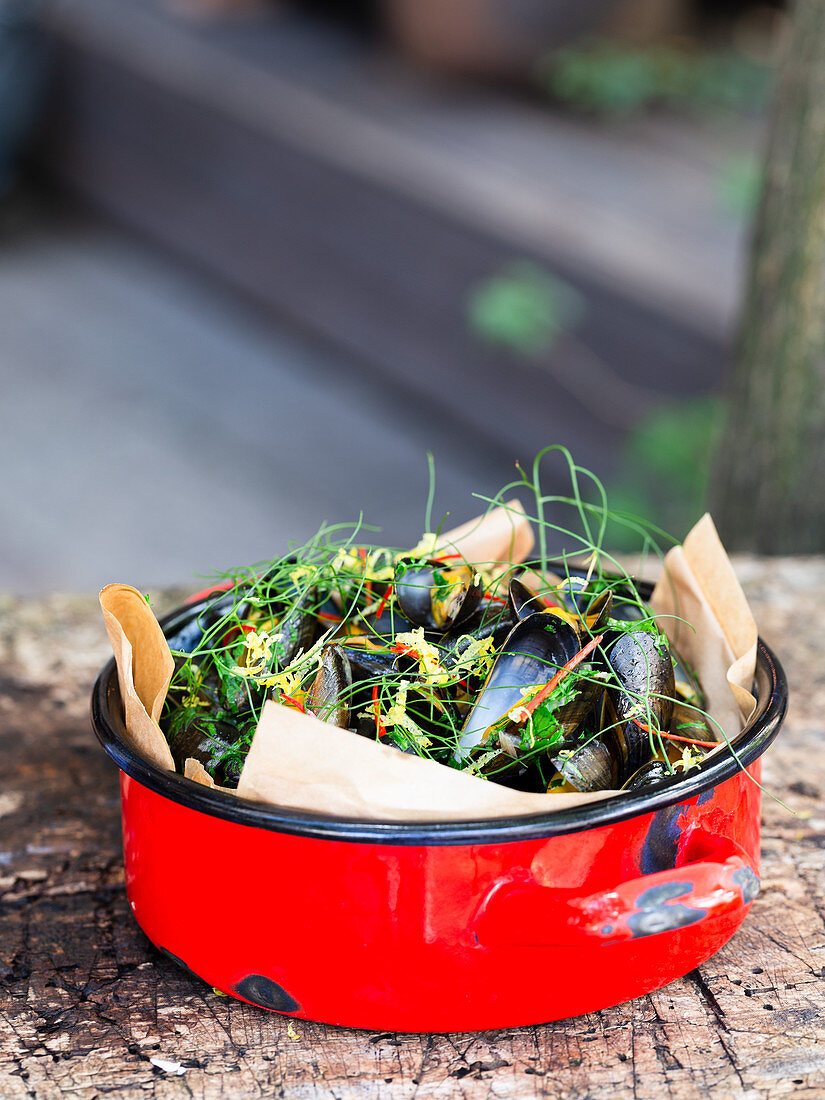 Black mussel with fennel, lemon and red chilli