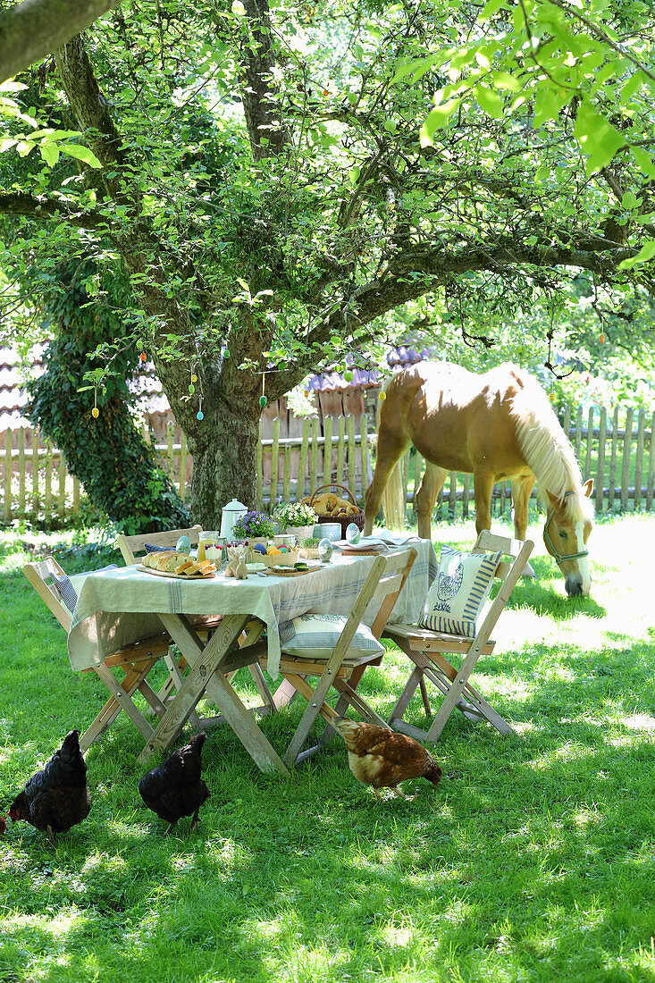 Table set for Easter meal in garden with hens and pony