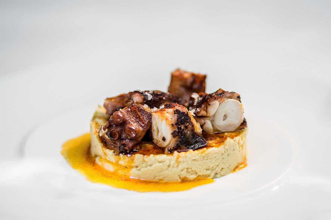 Appetizing gourmet dish with chopped grilled octopus served with pate and sauce on white plate against white background