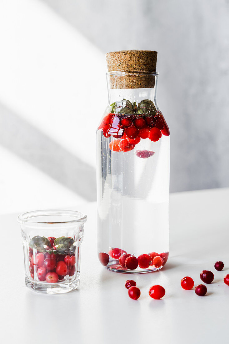 Infused water with cranberry and purple basil