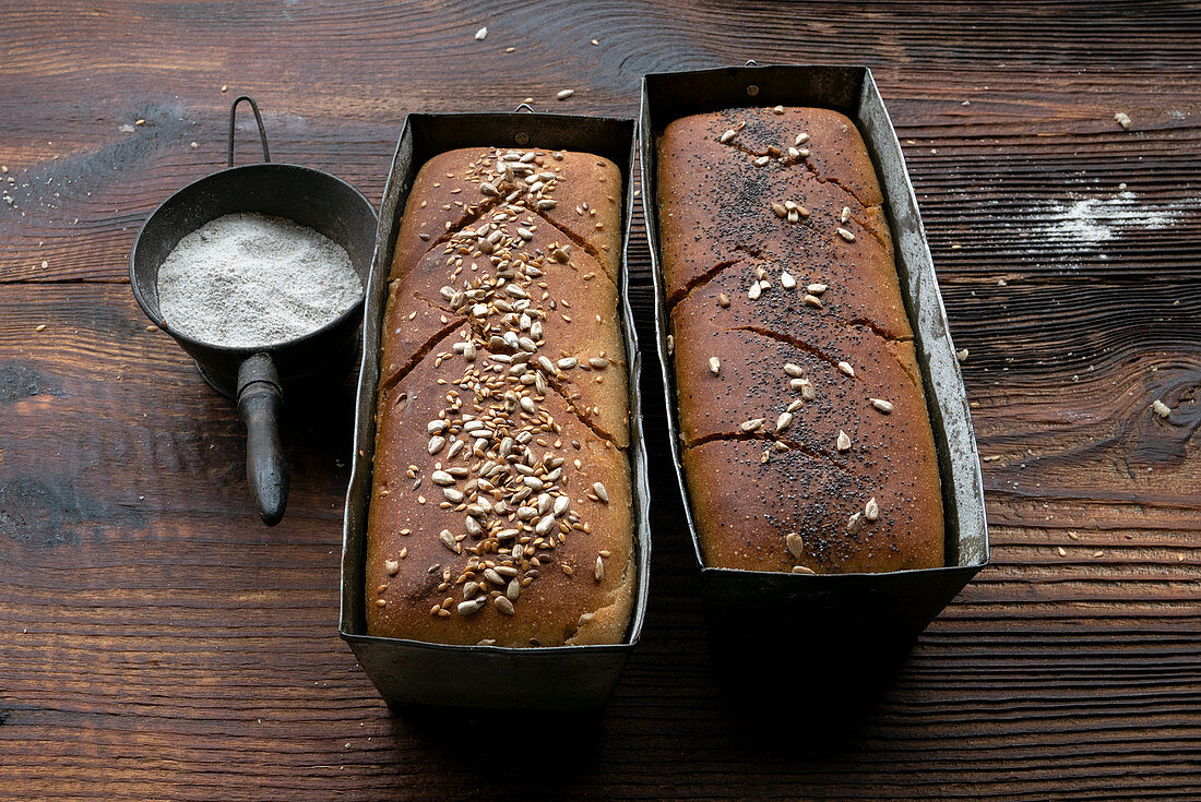 Two homemade loaves of bread in baking tins