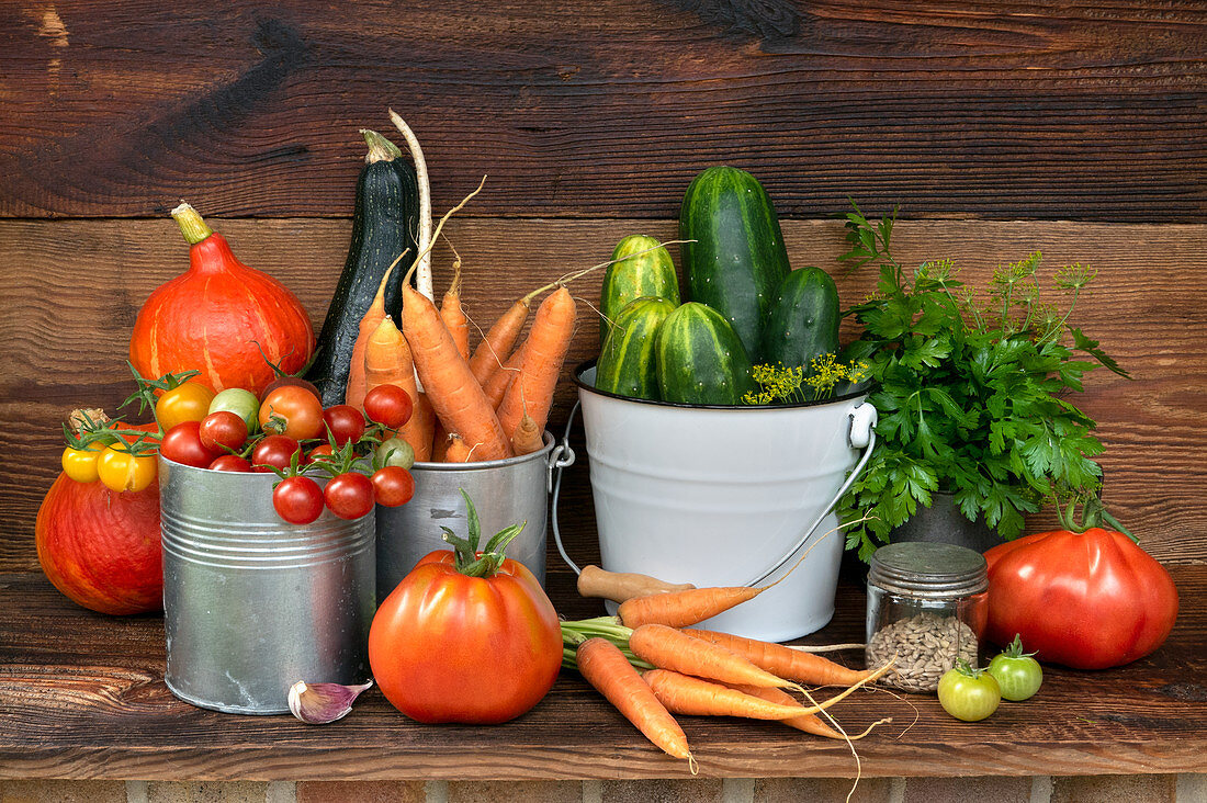 Still life with fresh organic vegetables from the garden