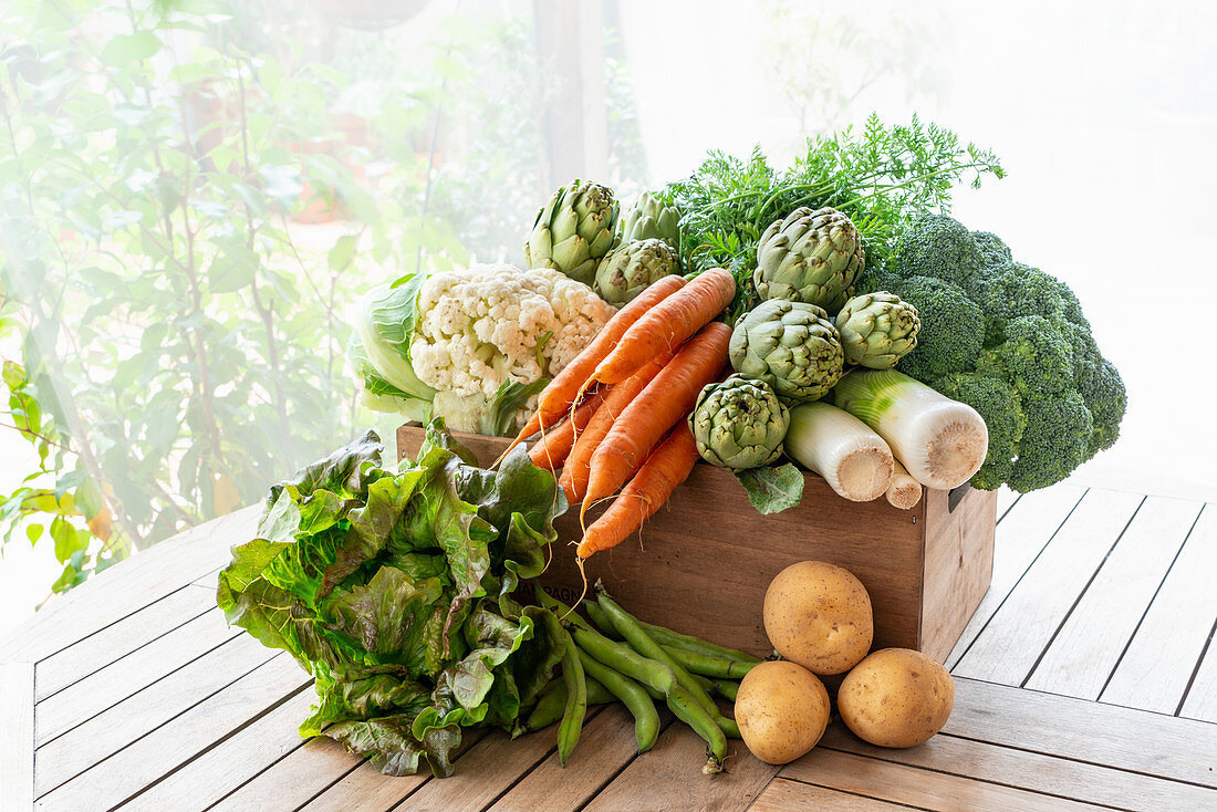 From above of harvest of various ripe vegetables placed in wooden box in garden