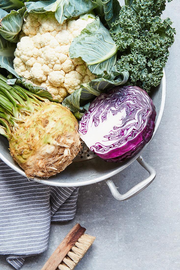 Cauliflower, kale, red cabbage and celeriac