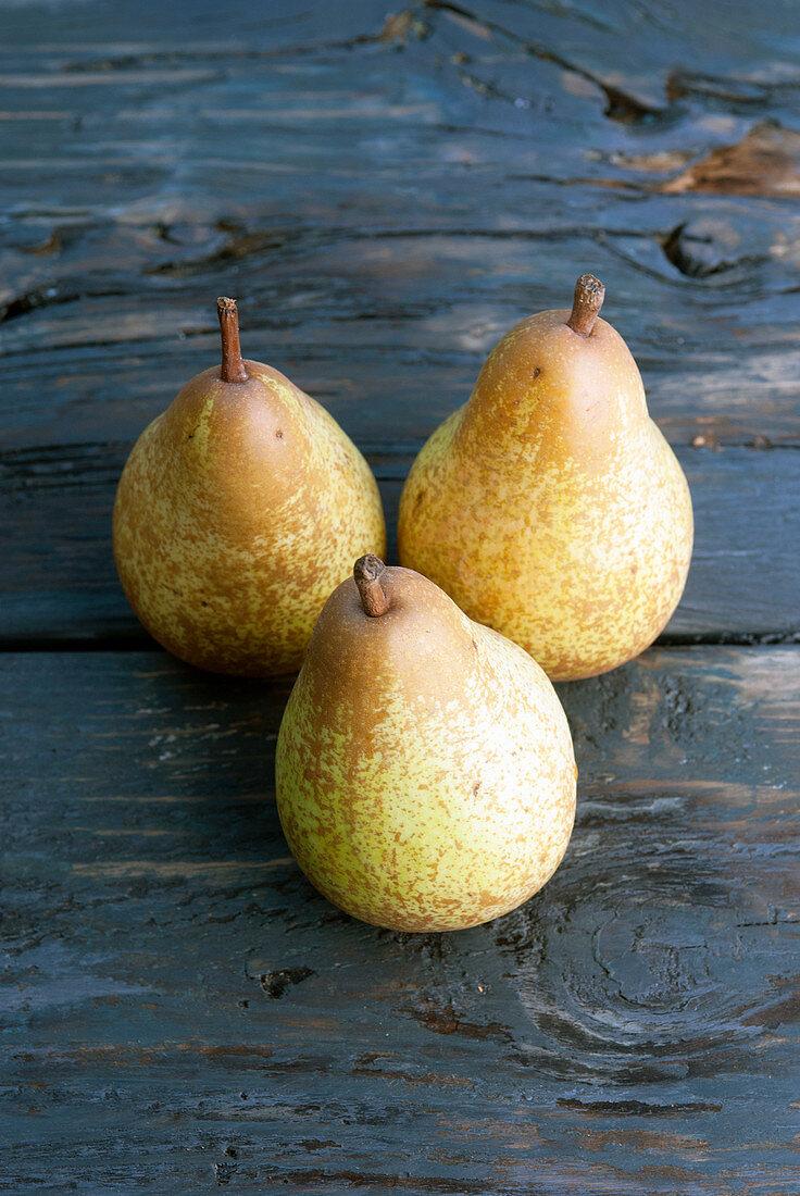 Three pears