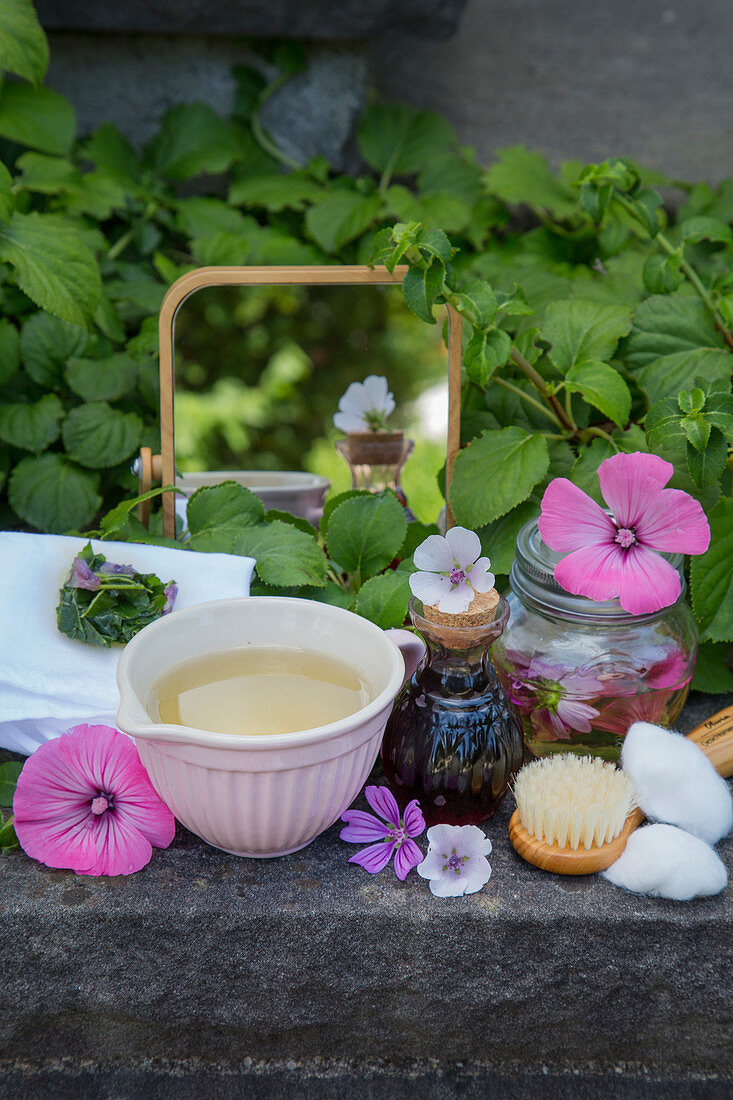 An arrangement of marsh-mallow compresses, mallow tincture and mallow oil