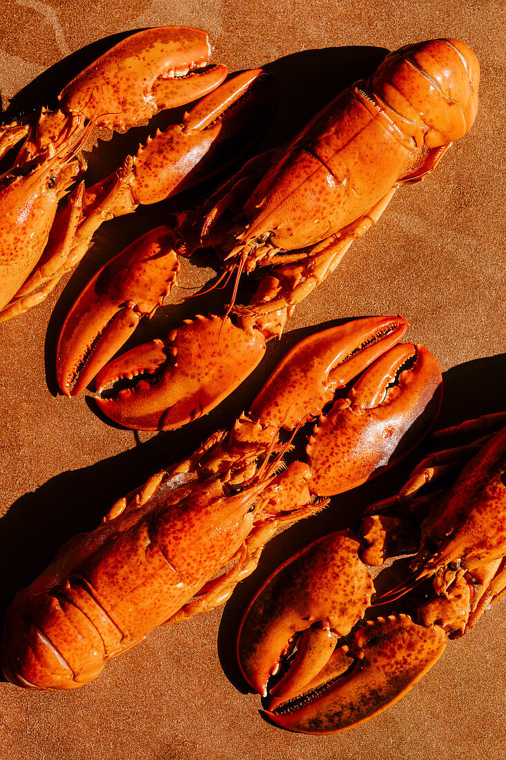 Cooked lobsters